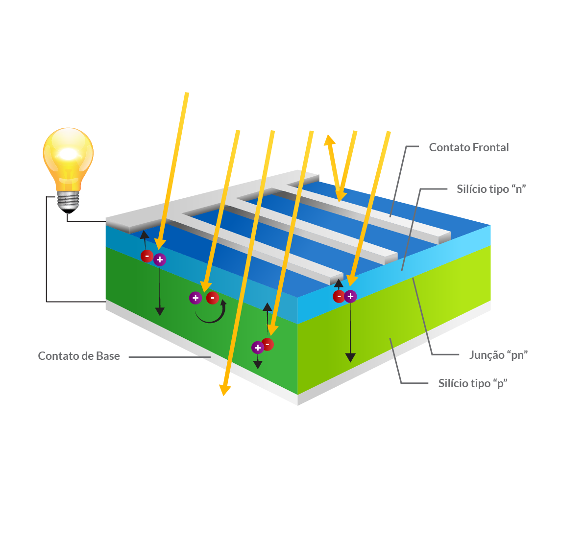célula solar _ uma célula fotovoltaica