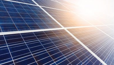 energia-solar-lidera-leilao-a-4-com-precos-baixos-e-maioria-de-projetos