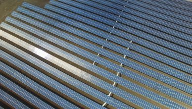 620-projetos-de-usinas-solares-sao-pre-selecionados-para-leilao-de-abril