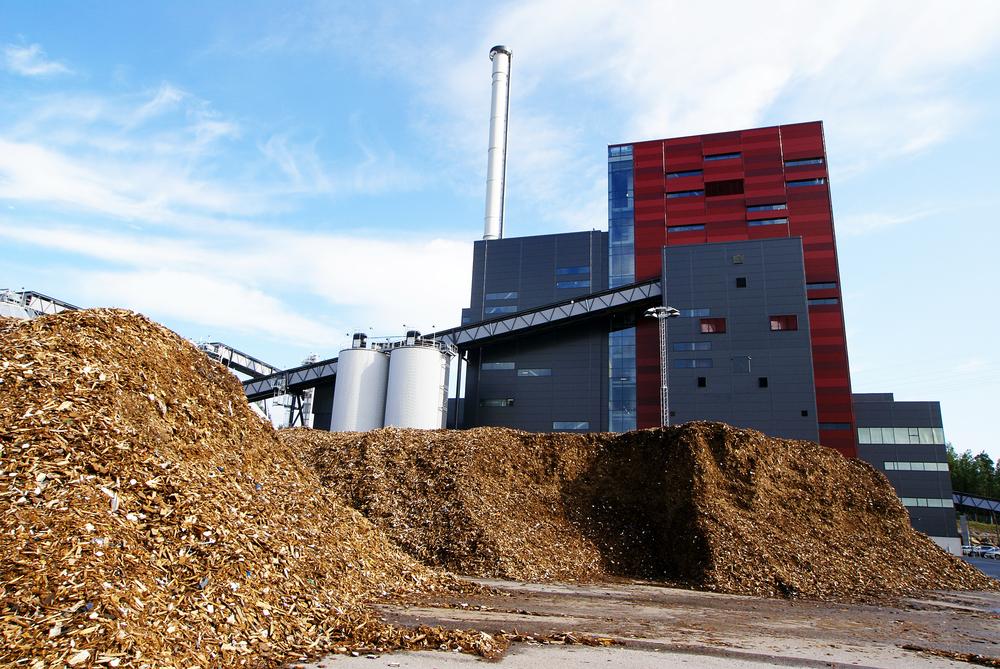 termelétrica a biomassa