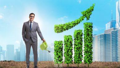 negócio sustentável e lucrativo